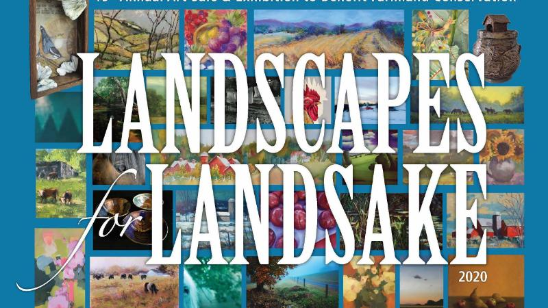 Landscapes for Landsake