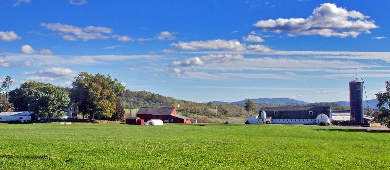 Richview Farm